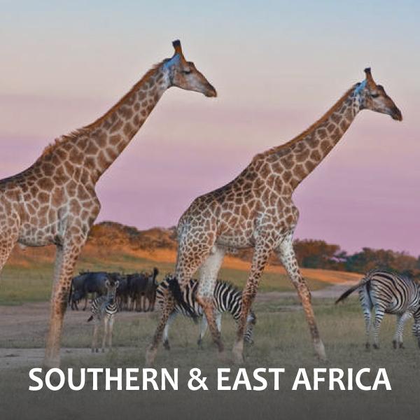 Souhtern & East Africa